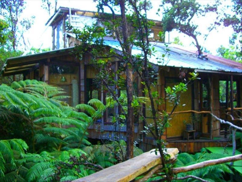 Volcano Treehouse #1